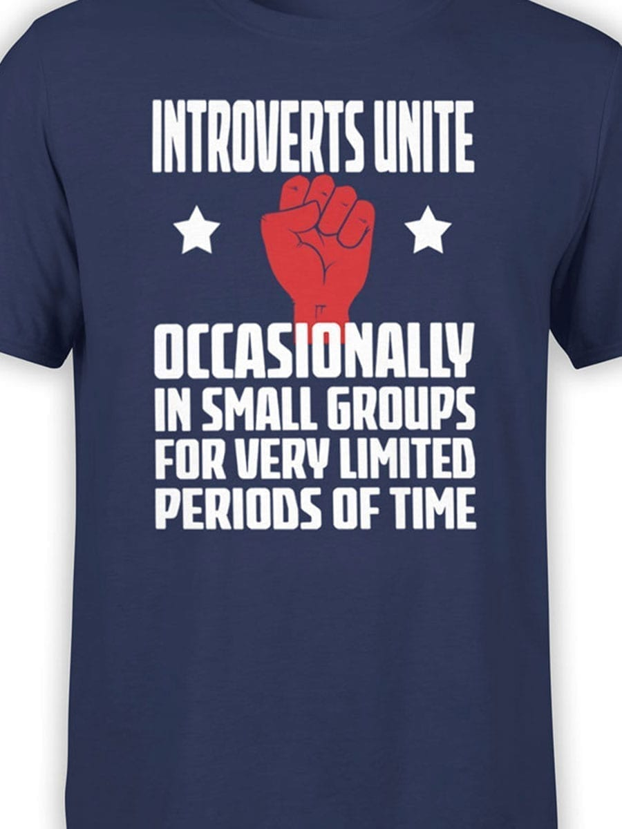2006 Introverts T Shirt Front Color